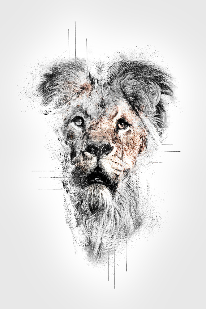 Abstract impressions: Lion