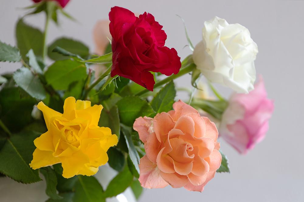 Een vaasje met roosjes