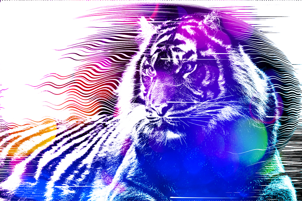 Sumatraanse tijger - Sumatran tiger (Modern Art Photoshop Action v2)