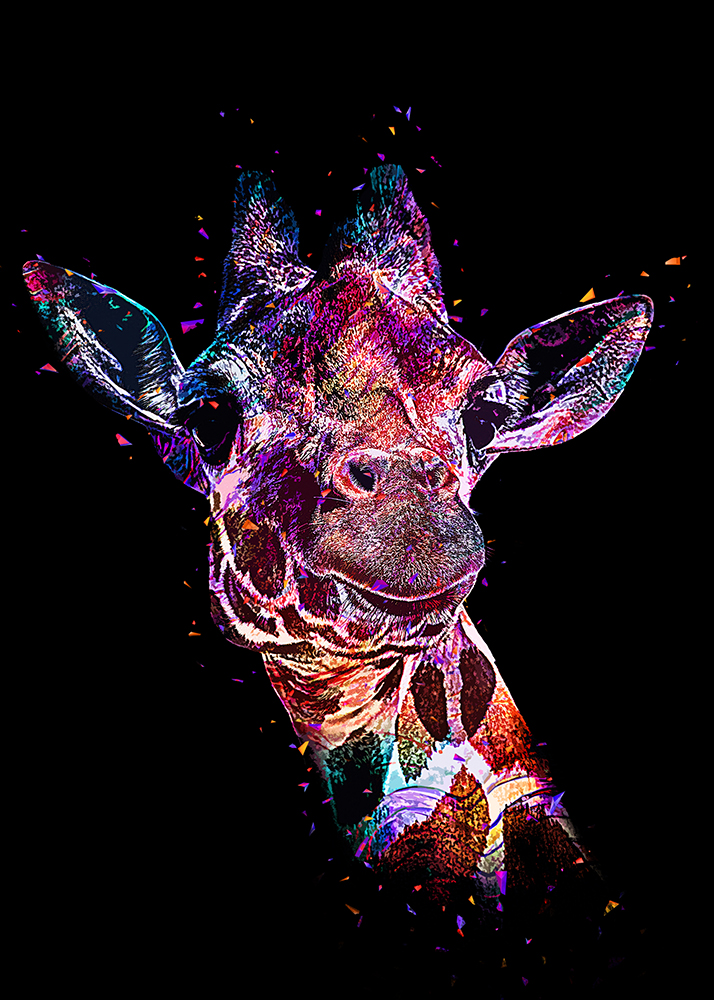 Netgiraffe - Reticulated giraffe (Abstract Color Photoshop Action)