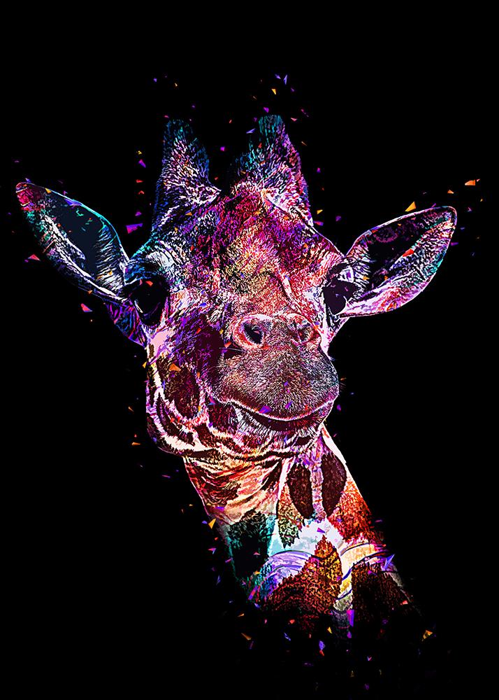 Netgiraffe - Reticulated giraffe (Abstract Color Photoshop Action)