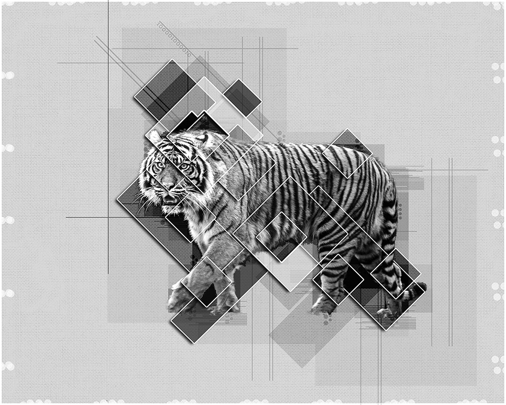 Tijger - Tiger - Collage graphic poster Photoshop action