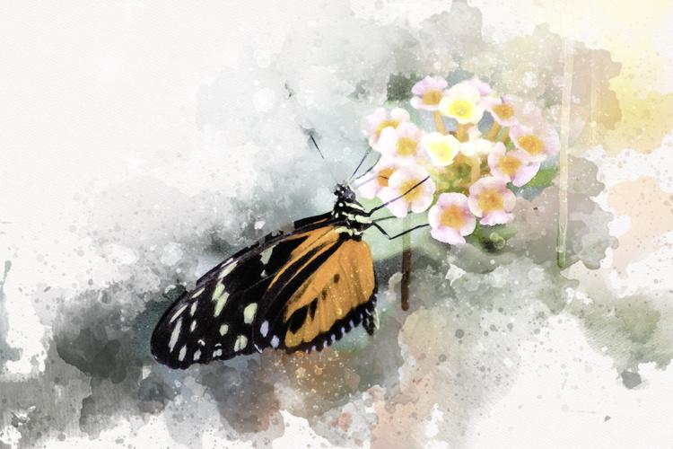 Digital Watercolor Painting